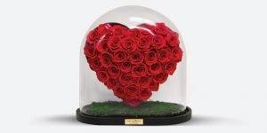 Forever-Rose-Valentine