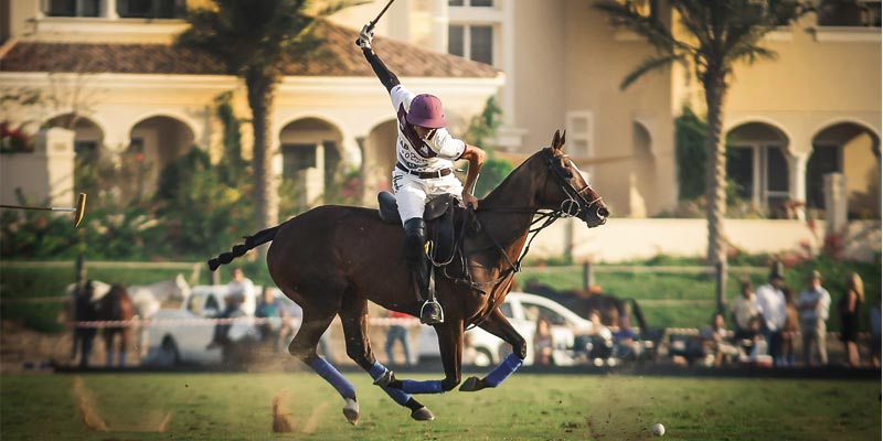 polo-day-edited